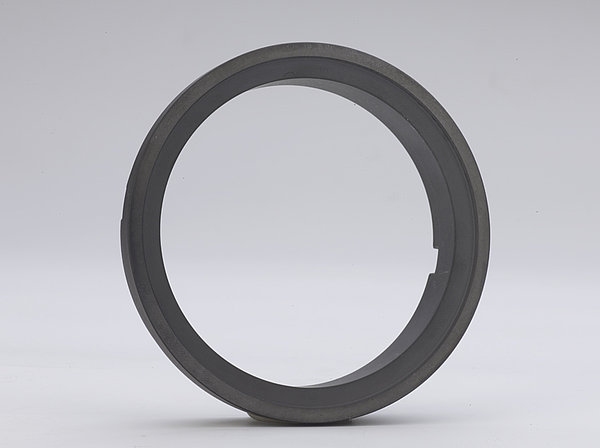 Seal ring for pumps produced out of silicon carbide